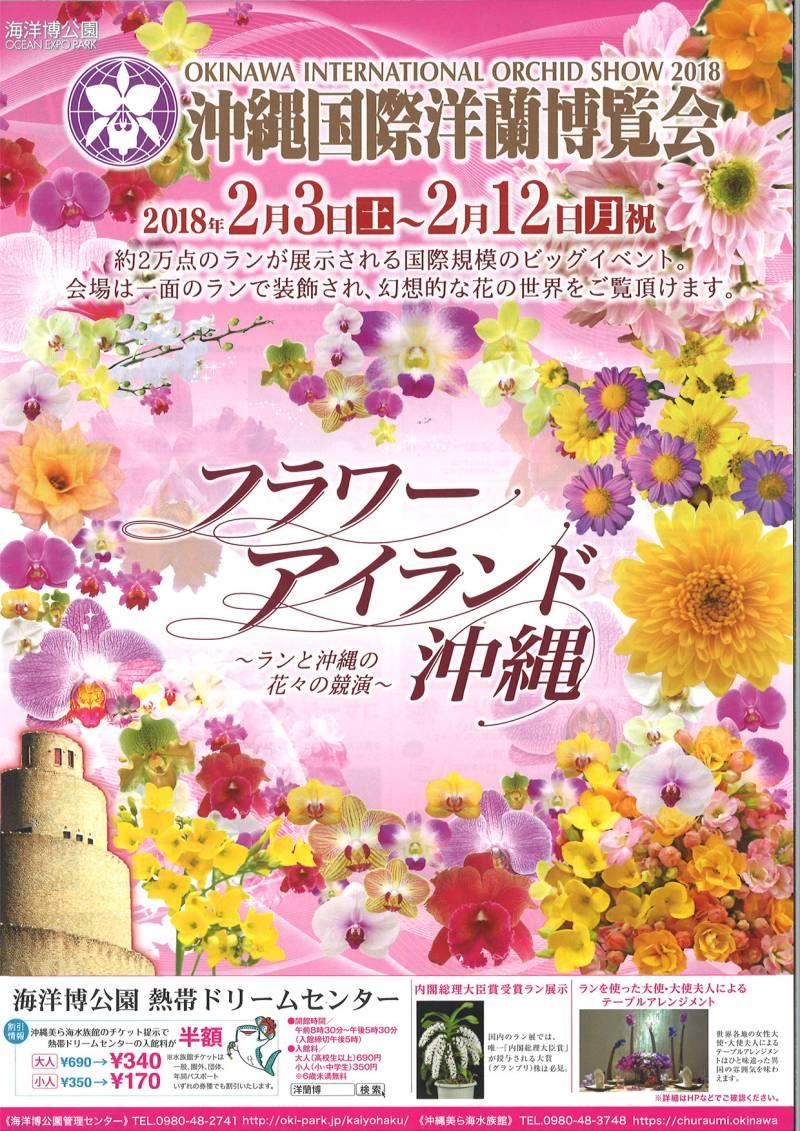 沖縄県北部にお花見へ