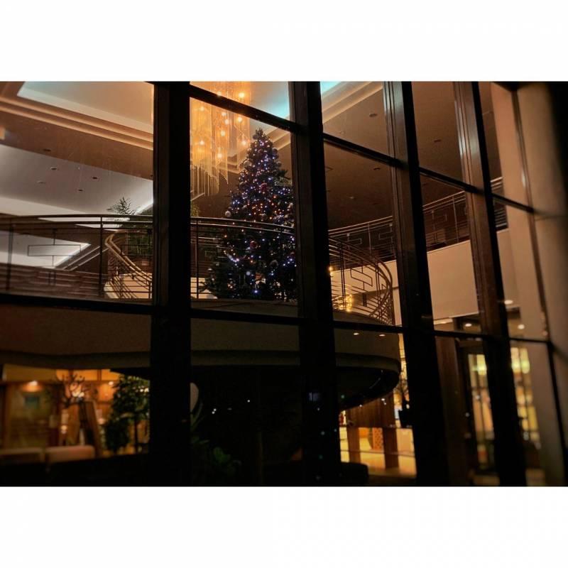外からのクリスマスツリー
