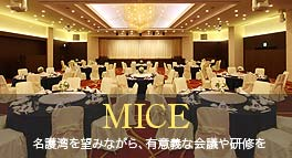 Meeting and the training that are significant in spite of being wish in Gulf of MICE Nago